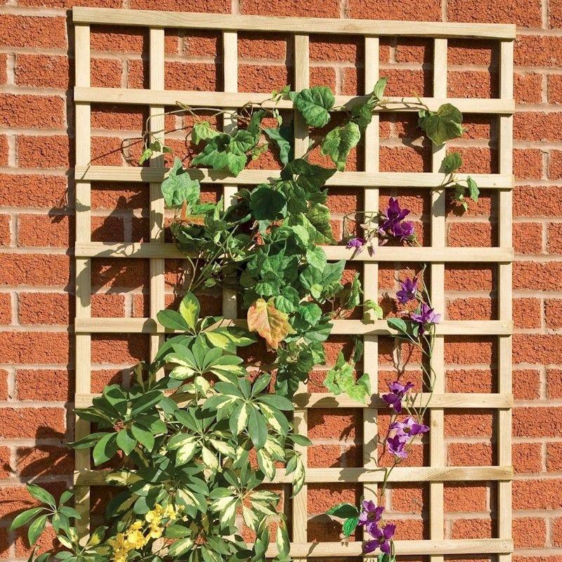 Square Trellis Panels Treated Kudos Fencing Supplies