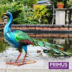 Primus Metal Vibrant Peacock
